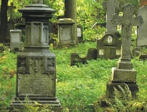 Zdjęcie - cmentarza - sprzątanie grobów